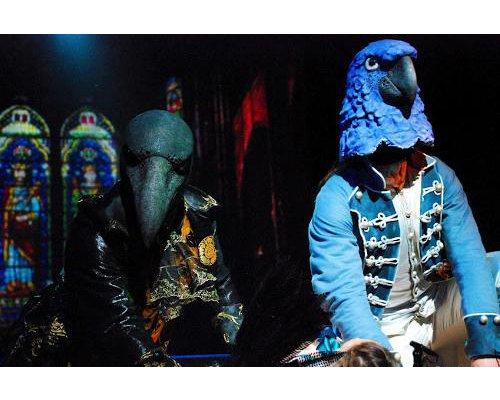 cauchemar-corbeau-perroquet